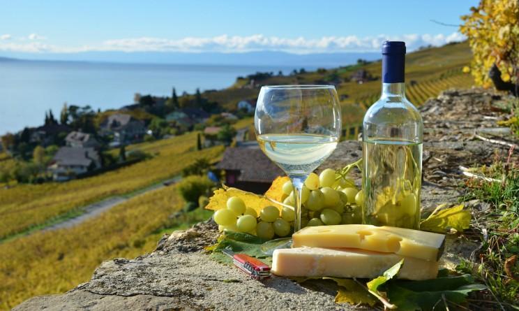 itinerari-del-vino-in-Francia-744x445.jpg - 92.72 kB